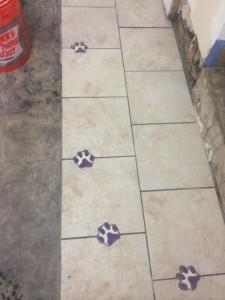Metropets Natick Floor Renovation 3
