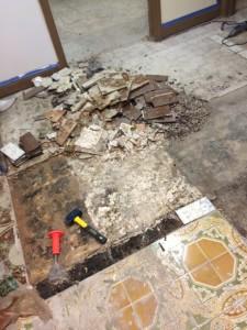 Metropets Natick Floor Renovation 2