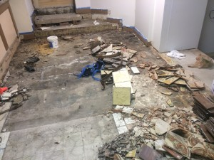 Metropets Natick Floor Renovation 4