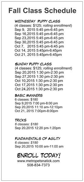 Metro Pets Announces Fall Dog Training Schedule – Metro Pets